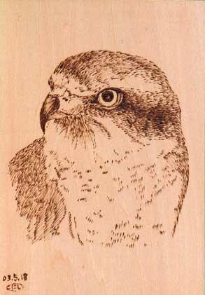 鳥のウッドバーニング